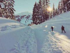 Jak kupić porządne buty narciarskie?